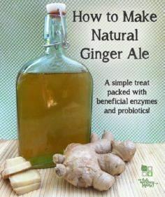 How To Make Natural Ginger Ale - 100 Beer And Alcohol Recipes - RecipePin.com