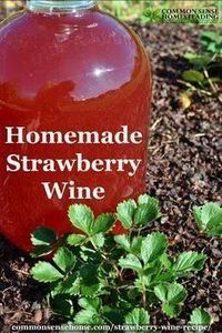 Easy Strawberry Wine - 100 Beer And Alcohol Recipes - RecipePin.com