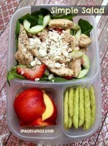 Round-up of lunches for grown-ups - 300 Bento Box Recipes - RecipePin.com