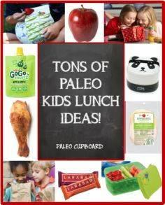 Tons of #Paleo Kids Lunch Ideas -  - 300 Bento Box Recipes - RecipePin.com