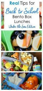 Want to create yummy lunches that  - 300 Bento Box Recipes - RecipePin.com