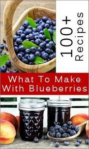For the lover of blueberries - 200 Delicious Blueberry Recipes - RecipePin.com