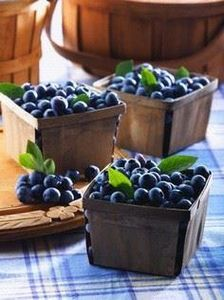 Blueberries - 200 Delicious Blueberry Recipes - RecipePin.com