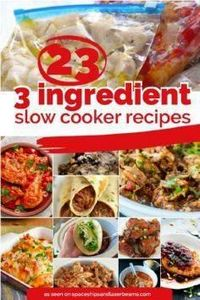 23 Quick & Easy 3-Ingredients  - 285 Crock Pot Recipes - RecipePin.com