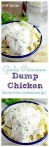 Sometimes no time for dinner happe - 285 Crock Pot Recipes - RecipePin.com
