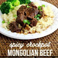 Crockpot Mongolian Beef Recipe - 285 Crock Pot Recipes - RecipePin.com