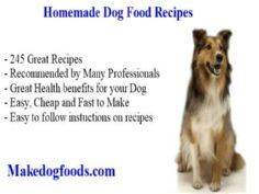 grain free dog food recipes - 400 Dog Food And Dog Treat Recipes - RecipePin.com