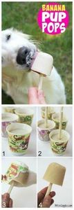Banana Pup Pops - A delicious home - 400 Dog Food And Dog Treat Recipes - RecipePin.com