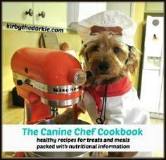 Lots of pup recipes - 400 Dog Food And Dog Treat Recipes - RecipePin.com