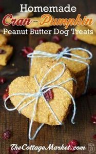 Cran-Pumpkin Peanut Butter Oatmeal - 400 Dog Food And Dog Treat Recipes - RecipePin.com