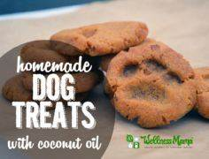 Homemade Dog Treats (With Coconut  - 400 Dog Food And Dog Treat Recipes - RecipePin.com