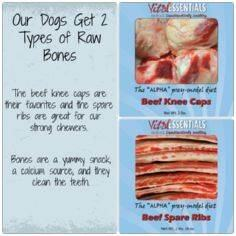 Raw Dog Food | Vital Essentials Pr - 400 Dog Food And Dog Treat Recipes - RecipePin.com