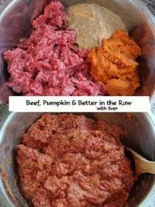 Homemade Dog Food Recipe - Beef &a - 400 Dog Food And Dog Treat Recipes - RecipePin.com