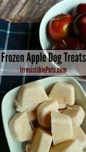 DIY Frozen Apple Dog Treat Recipe  - 400 Dog Food And Dog Treat Recipes - RecipePin.com