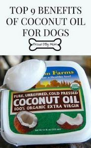 Top 9 Benefits of Coconut Oil For  - 400 Dog Food And Dog Treat Recipes - RecipePin.com