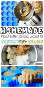 These homemade dog treats are incr - 400 Dog Food And Dog Treat Recipes - RecipePin.com
