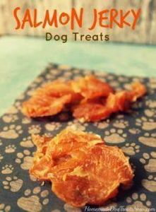 Salmon Jerky Dog Treats. So EASY t - 400 Dog Food And Dog Treat Recipes - RecipePin.com