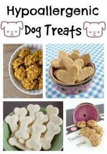 Looking for amazing hypoallergenic - 400 Dog Food And Dog Treat Recipes - RecipePin.com