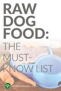 Feeding Fido raw dog food would se - 400 Dog Food And Dog Treat Recipes - RecipePin.com