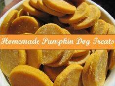 Homemade Pumpkin Dog Treats, great - 400 Dog Food And Dog Treat Recipes - RecipePin.com