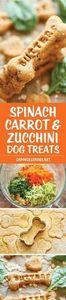 Spinach, Carrot and Zucchini Dog T - 400 Dog Food And Dog Treat Recipes - RecipePin.com