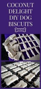 Coconut Delight DIY Dog Biscuits H - 400 Dog Food And Dog Treat Recipes - RecipePin.com
