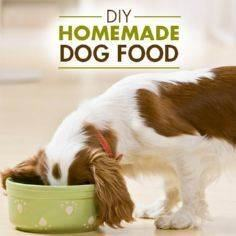 Give your pooch the antioxidants a - 400 Dog Food And Dog Treat Recipes - RecipePin.com