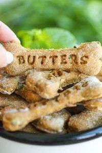 Pumpkin Apple Doggie Mint Treats - - 400 Dog Food And Dog Treat Recipes - RecipePin.com