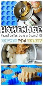 Homemade Frozen Peanut Butter, Ban - 400 Dog Food And Dog Treat Recipes - RecipePin.com