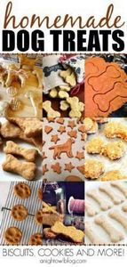 Such a fun list of Homemade Dog Tr - 400 Dog Food And Dog Treat Recipes - RecipePin.com