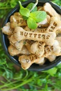 Pumpkin Apple Doggie Mint Treats - 400 Dog Food And Dog Treat Recipes - RecipePin.com