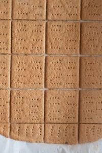Gluten Free Graham Crackers...for  - 275 Gluten Free Recipes - RecipePin.com