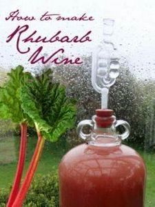 Rhubarb Wine Recipe - 300 Homebrewing Recipes to Brew at Home - RecipePin.com