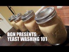 Yeast Harvesting and Washing 101 | - 300 Homebrewing Recipes to Brew at Home - RecipePin.com