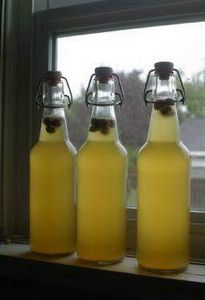 Sima (Finnish May Day drink -- fer - 300 Homebrewing Recipes to Brew at Home - RecipePin.com
