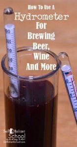 How to use a hydrometer to measure - 300 Homebrewing Recipes to Brew at Home - RecipePin.com