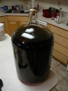 Blueberry Cider - Home Brew Forums - 300 Homebrewing Recipes to Brew at Home - RecipePin.com