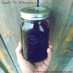 APPLE PIE MOONSHINE / Apple Pie Mo - 300 Homebrewing Recipes to Brew at Home - RecipePin.com