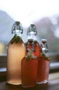 Homebrew Kombucha, via Flickr. - 300 Homebrewing Recipes to Brew at Home - RecipePin.com
