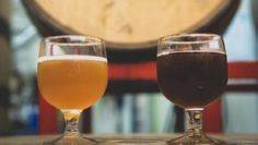 Beginner's Guide to Sour Beer: Com - 300 Homebrewing Recipes to Brew at Home - RecipePin.com