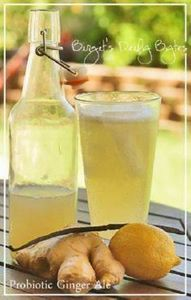 Homemade Probiotic Ginger Ale - 300 Homebrewing Recipes to Brew at Home - RecipePin.com