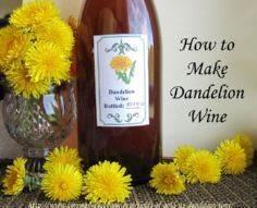 How to Make Dandelion Wine and Dan - 300 Homebrewing Recipes to Brew at Home - RecipePin.com