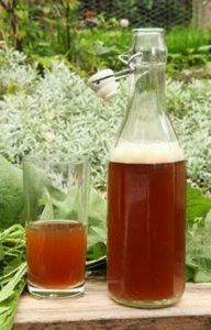 Dandelion and burdock beer - being - 300 Homebrewing Recipes to Brew at Home - RecipePin.com