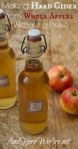 Making Hard Cider from Whole Apple - 300 Homebrewing Recipes to Brew at Home - RecipePin.com