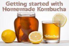 Getting Started With Homemade Komb - 300 Homebrewing Recipes to Brew at Home - RecipePin.com