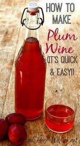 Quick and Easy Plum Wine And Here  - 300 Homebrewing Recipes to Brew at Home - RecipePin.com