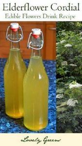 Elderflower Cordial recipe - bottl - 300 Homebrewing Recipes to Brew at Home - RecipePin.com