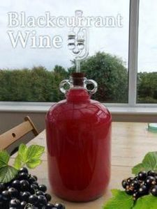 Make your own delicious fruit wine - 300 Homebrewing Recipes to Brew at Home - RecipePin.com