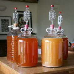 Making Cider at Home - Great Briti - 300 Homebrewing Recipes to Brew at Home - RecipePin.com