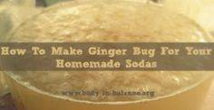 How To Make Ginger Bug For Your Ho - 300 Homebrewing Recipes to Brew at Home - RecipePin.com